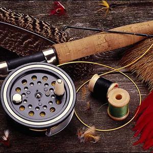 Охотничьи и рыболовные магазины Маслянино